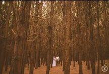 Wedding - Inspiration