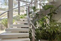 Indoor Garden / by Clara Fortuna