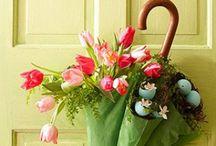 Spring / by Susan Bishop Holloway