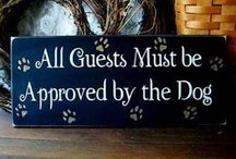 Home: Dogs Are A Necessity / A house isn't a home unless there is at least one dog in it :-)  / by Colleen Mooney-Gallagher