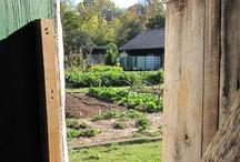 Beardsley Community Farm