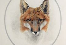 Foxes / by Colleen Mooney-Gallagher