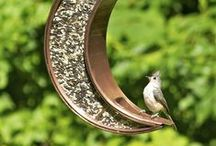 Birding: From Birdhouses to Birdbaths / From birdhouses to birdbaths, www.LandscaperOutlet.com has everything you need to enjoy birds in your outdoor space.   Enjoy beautiful bird-attracting or bird-themed decor and accents during any season!