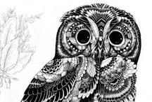 Owl love / by Selene Preciado