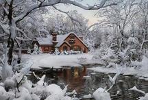 Vive l'hiver ! / by Line Huot