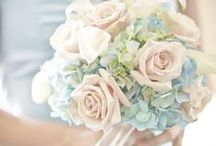 Pale Blue Wedding Ideas / Soft pale - blue best wedding accessories,bridal jewellery, headbands,tiaras & all the other lovely things like flowers and great reception ideas. Pantone serenity 2016