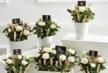Garden Chic Wedding Cakes & Ideas / Gardens and nature inspired cakes and decorations