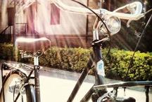 Adriatica | avantum / Bicicicletas Adriatica a un precio asequible. Modelos clásicos, trekking, fixie y más. Comercializada en España por avantum.  www.avantum.bike/adriatica
