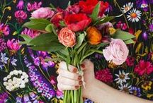 · F · Floral / Blooms // Botanicals // Florals // Flowers
