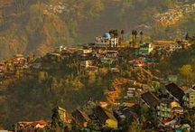 India, Sri Lanka and Nepal Love Affair / Can you fall in love with the beautiful colours and sights of a country without actually visiting it?  Yes Of Course You Can. I have fallen in love with India, Sri Lanka and Nepal. It is a heady mix of tea growing, elephants and mountains.