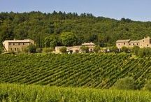 Eco and Green Wedding Venues in Tuscany