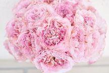 svatební kytice wedding bouquets