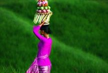 Indonesia / Best of travel in Indonesia #travel #indonesia