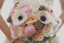 Wedding / by Joanna Meachum