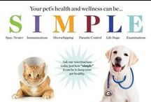 Pet Care / Keep your pet healthy and happy with this pet care tips. / by Michigan Humane Society