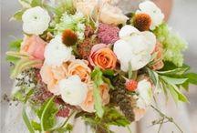 flowers / by Stephanie Esposito
