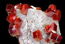 Cool Rocks, Mineral & Fossils / by Pamela Pincha-Wagener