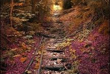 ~ Color - Dark Autumn Landscapes / I might not be DA, but these photos really speak to me and feel good in my soul...