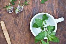 herbs / by Femme Postale