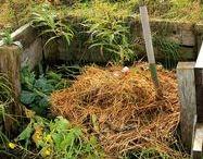 Greenery - Soil & Compost