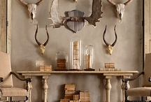 Home Decor Ideas / by Beaver Creek