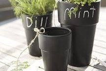 THINGS | for the outdoors / Just landscape, garden, etc. products/things