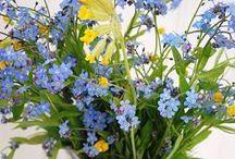 BEAUTIFUL FLOWERS IN VASES / by Beatriz de Bauer