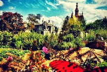 2012 Experience Historic Oakland Cemetery Instagram Contest Winners