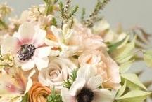 Flower Power / by BeautySmith