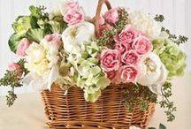 Floral Design / by Lee Ann