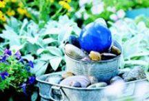 Backyard Oasis / Gardening and planting ideas. / by Danielle Janda