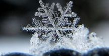 Snowflakes / Complex shapes emerge as the flake moves through imaginations.