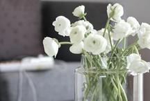 Flowers & Green Ideas