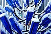 Color Blue / by Jennie B. Jacobs