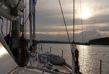 """Ohoy!! / """"No ocean; no life. No ocean; no us.""""Dr. Sylvia Earle, oceanographer"""