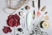 Feathers & Found Objects