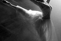 Ballet-Danza