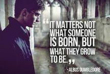 Harry Potter Addiction <3