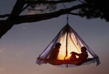 Hammock Love / Urban hammock, poolside hammock, art hammock, hammock floor, eco-resort hammock, tropical hammock, winter hammock, cuddly hammock, bean bag hammock, bunk bed hammock, impossible-to-enter hammock, I-hate-mosquitos hammock .....