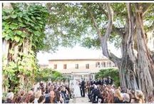   ADDISON WEDDINGS   / Weddings photographed by Thompson Photography Group at the ADDISON IN BOCA RATON FLORIDA