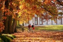 Fall for Vanderbilt / Fall is an action-packed and gorgeous time at Vanderbilt University!