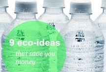 Greener Ideas / by Terri Arnold-Krikie