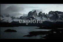explora Video Library / Have a glimpse of the explora experience!