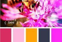 Colors / by Terri Arnold-Krikie