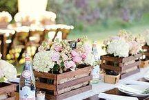 Wedding / by Megan Ganger