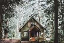: cabin in the woods : / My happy place: quietude amidst tall evergreens and a cozy cabin.