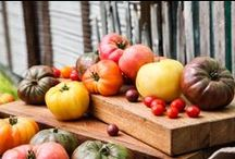 Growing Heirloom Tomatoes / Tips for getting the best tasting tomatoes you've ever grown. / by Gardening the Hudson Valley