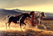 All God's Creatures ... Equine Majesty / by Jean Heavrin