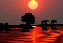 Trip to Zambia and Botswana 2013