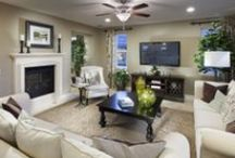 Dream Home: Fabulous Fireplaces
